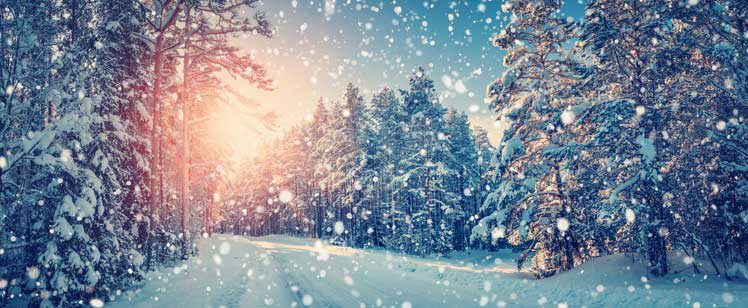 Jetzt große Winter Aktion bei Sinos